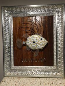 Il Pesce Sanpietro
