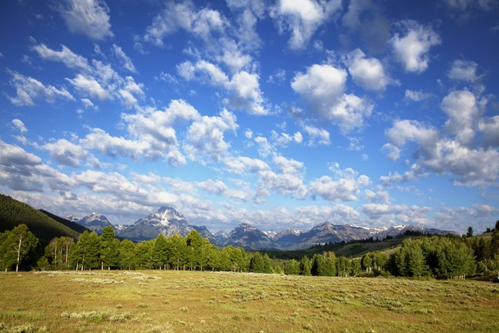 Yellowstone and Grand Tetons Nationa - Mark Smith Nature Photography