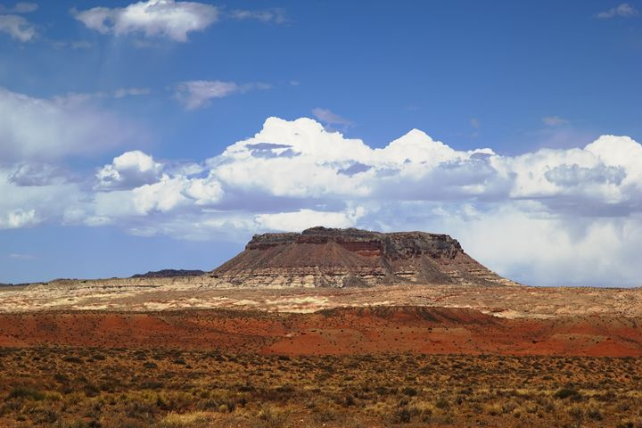 Capitol Reef National Par - Mark Smith Nature Photography