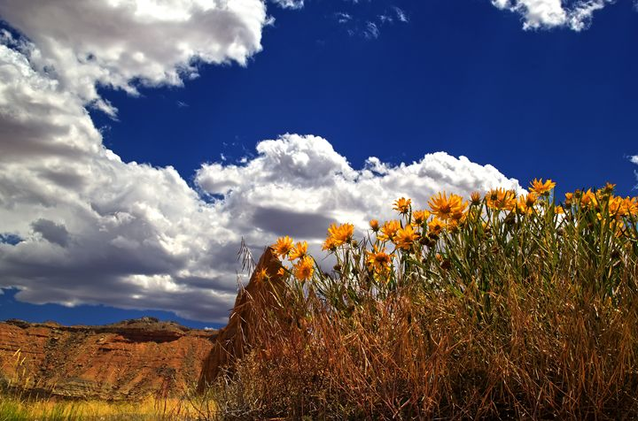 Capitol Reef National Park Cathedral - Mark Smith Nature Photography