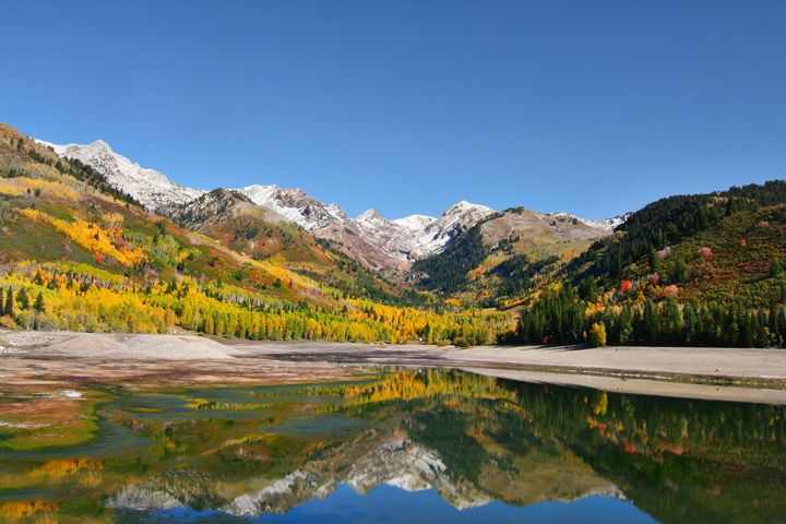 Rocky Mountain Fall - Mark Smith Nature Photography