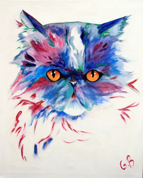Bailey The cat - Gaelle Barret