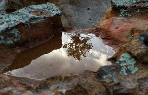 Universe in a Puddle