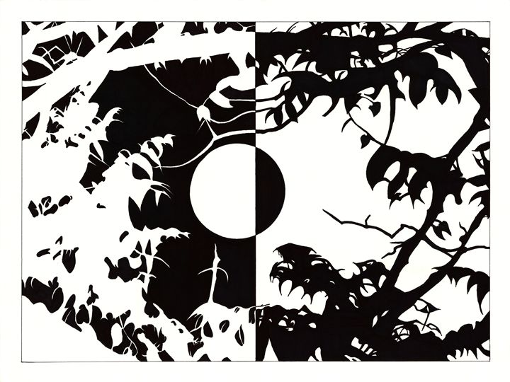 Through The Leaves - David's Art