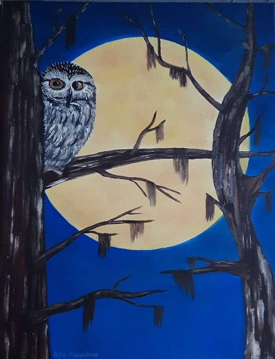 Mystic Moonlight - Rita Waldrop