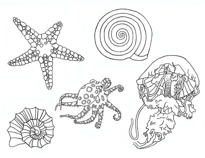 ocean - Papyrus Art Pieces