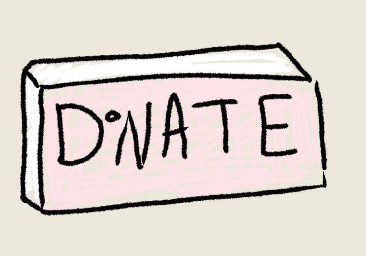 DONATIONS - Shannon Lane