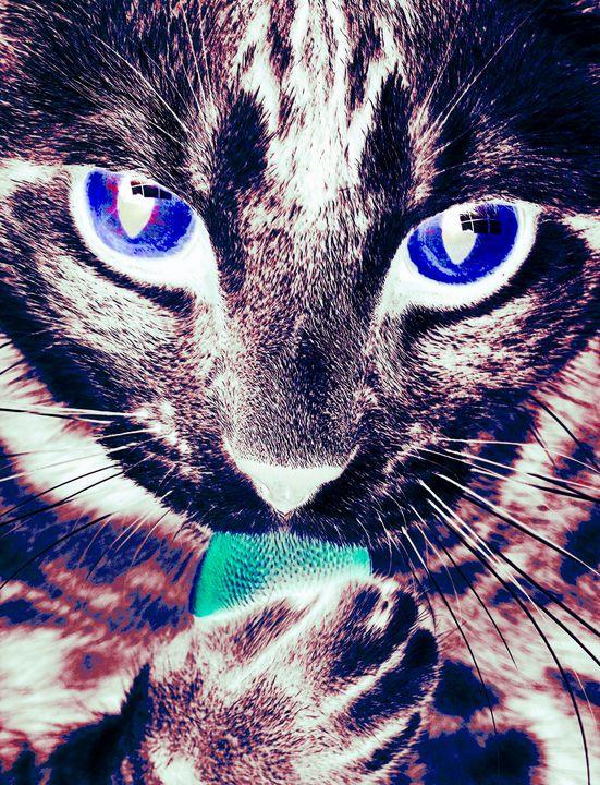 Rainbow Cat II - RA Williams
