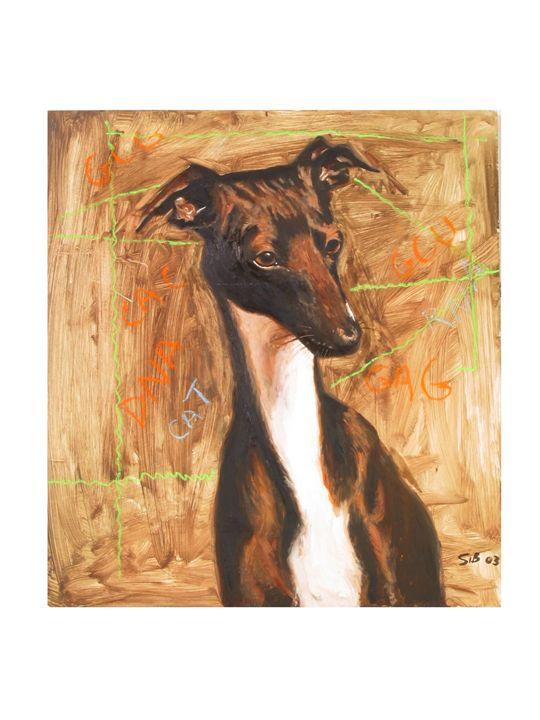A dog's Universe - John H. Sibley