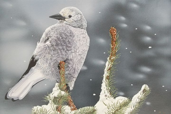 Clark's Nutcracker - Five Styx Studio