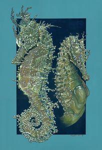 Seahorse Duo
