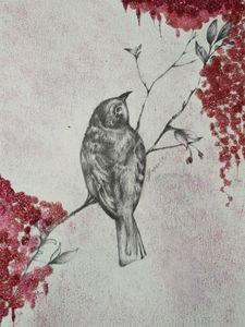 La rosee de l oiseau