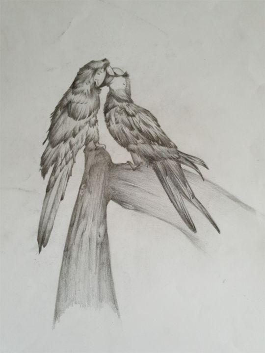 In amour de perroquet - Michelebussola