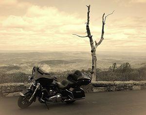 Harley Ride in Shenandoah - NatureBabe Photos