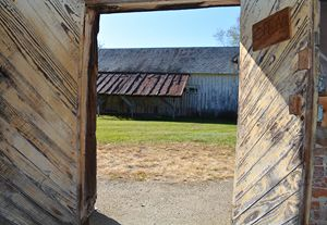 Peering through the Barn Doors