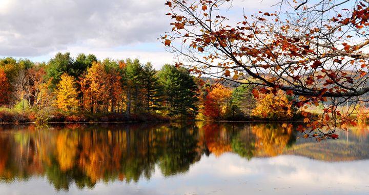 Autumn Reflection - NatureBabe Photos