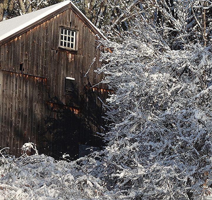 Barn Peeking through Snowy Branches - NatureBabe Photos