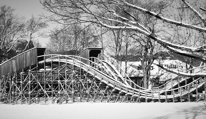 Snow-Covered Roller Coaster - NatureBabe Photos