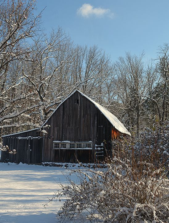 Winter Wonderland Antique Barn - NatureBabe Photos