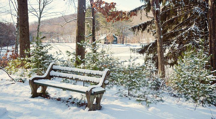 Have a Seat - NatureBabe Photos