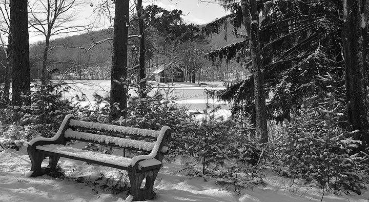 Snow-Covered Park Bench - NatureBabe Photos