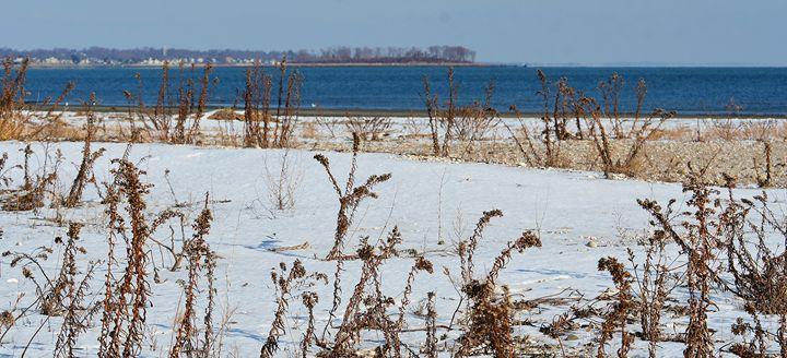 Snow-Covered Beach - NatureBabe Photos