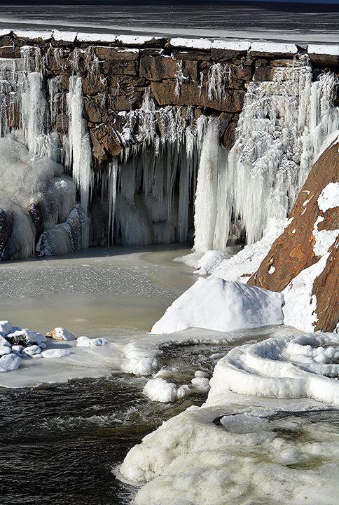 DAMN it's Cold at the Dam - NatureBabe Photos