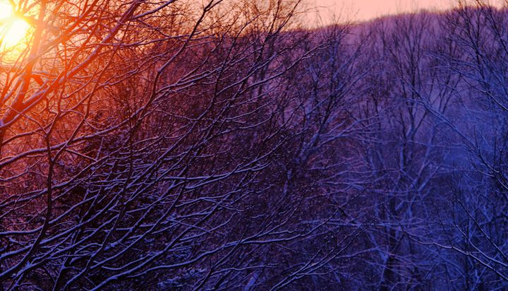 Winter Sunset - NatureBabe Photos