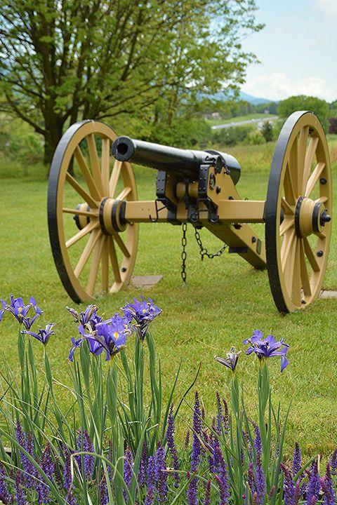Cannon at Virginia Battlefield - NatureBabe Photos