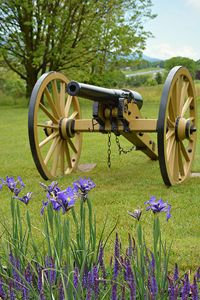 Cannon at Virginia Battlefield