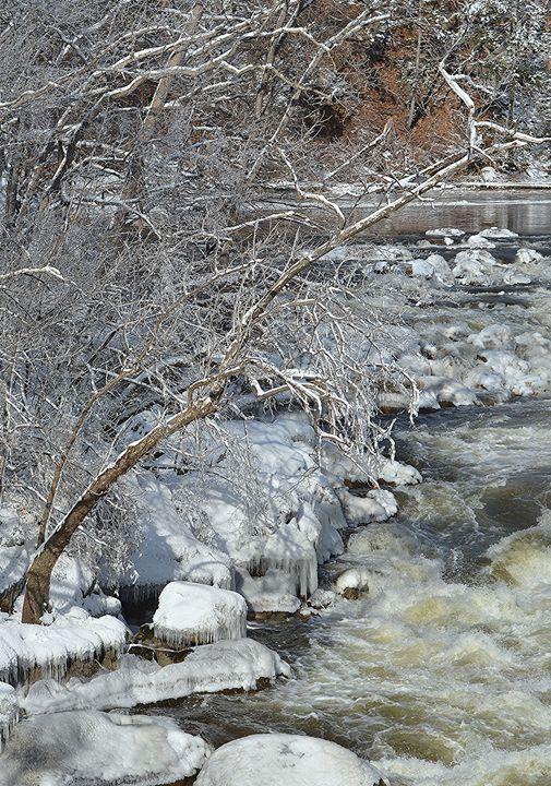 Frozen Ravine - NatureBabe Photos
