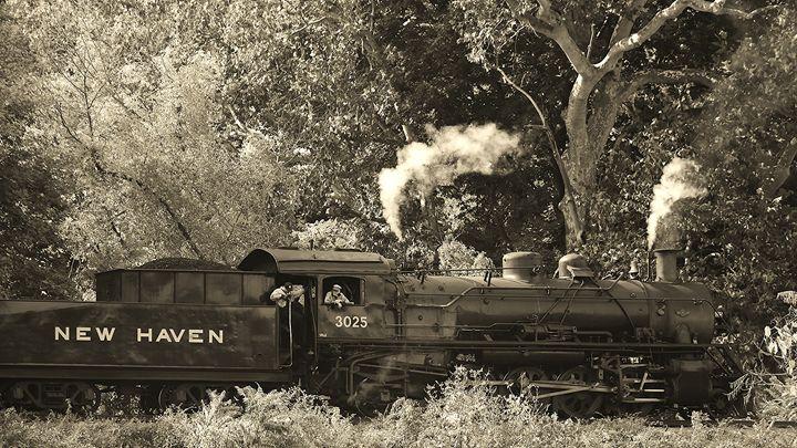 Steam Locomotive - NatureBabe Photos