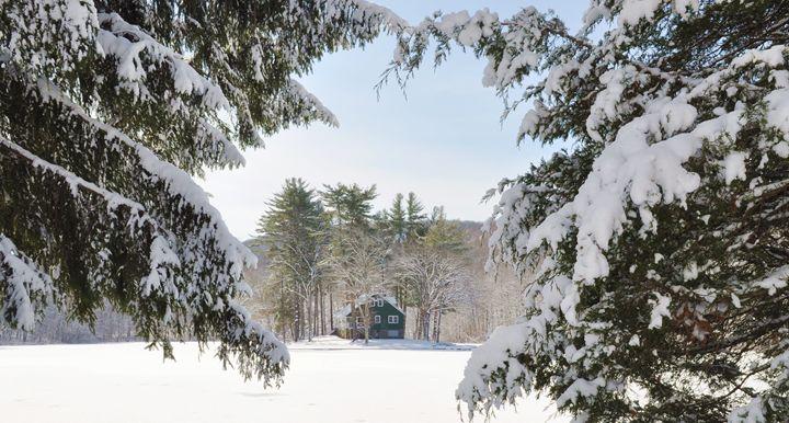 Connecticut - Winter Wonderland - NatureBabe Photos