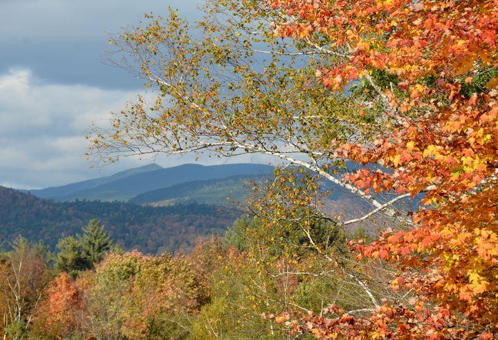 View from Campton Pond - NatureBabe Photos