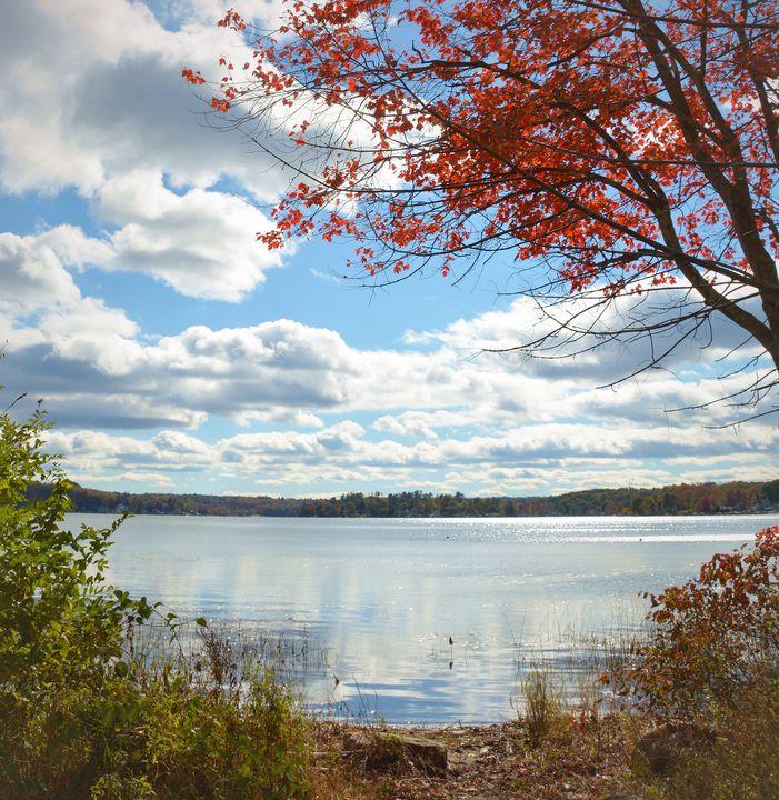 Autumn at Bantam Lake - NatureBabe Photos