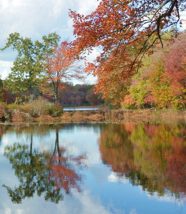 Autumn at the Pond - NatureBabe Photos