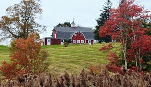 Red Barn, Red Leaves