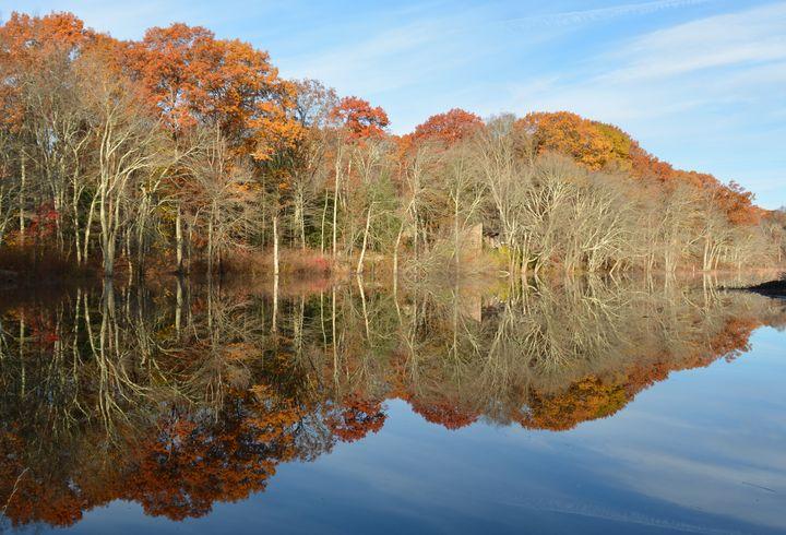 November Reflections - NatureBabe Photos