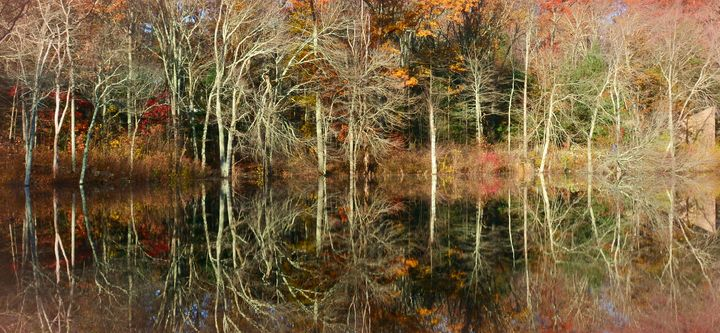 Autumn's Mirror - NatureBabe Photos