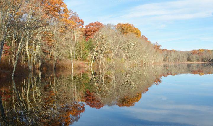 November Textures and Tones - NatureBabe Photos