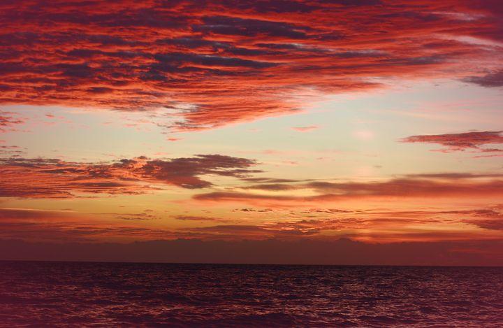 Carolina Sea & Skies - NatureBabe Photos
