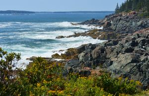 North Atlantic Coastline - NatureBabe Photos