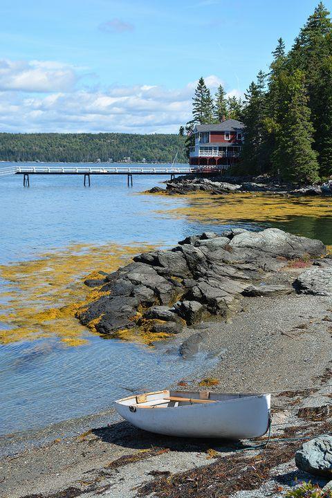 On the Shores of Eggemoggin Reach - NatureBabe Photos
