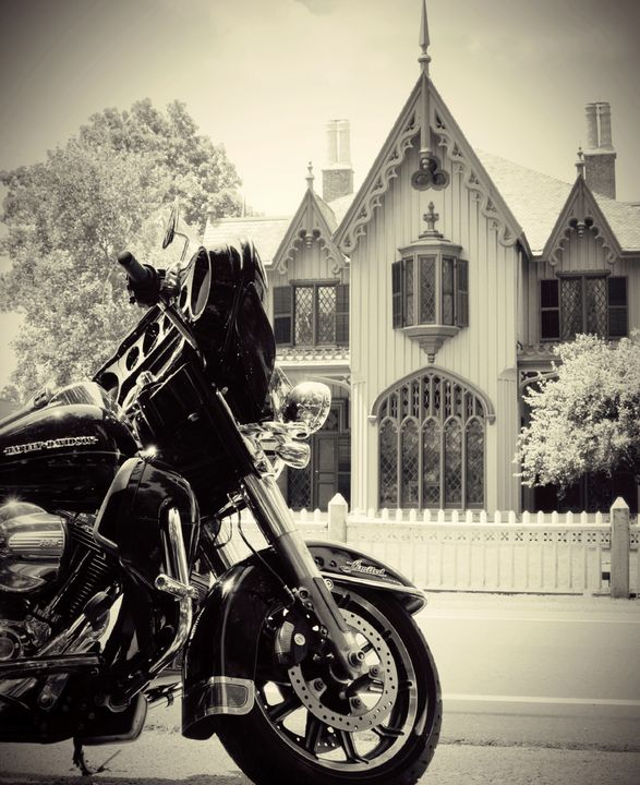 Harley At Roseland Cottage - NatureBabe Photos