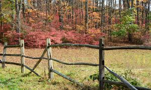 Rustic Country Fence on a Fall Day