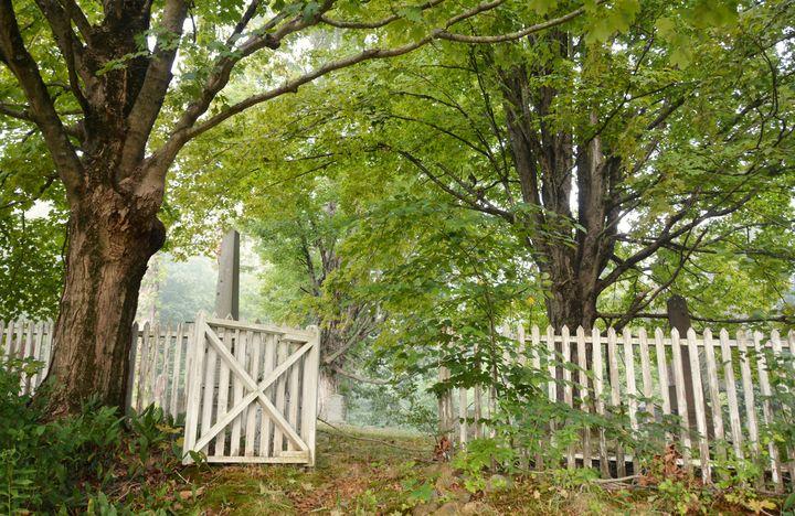 Gateway to St. Peter's Cemetery - NatureBabe Photos