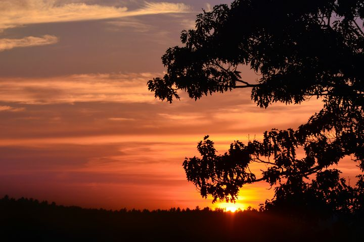 August Sunset Silhouette - NatureBabe Photos
