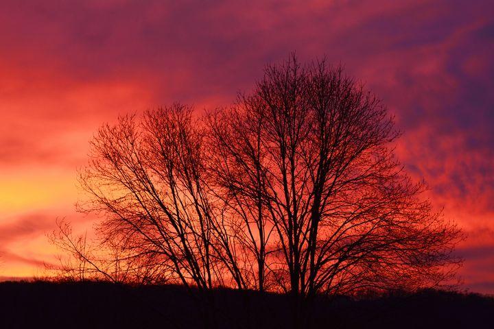 December Hillside Sunset - NatureBabe Photos