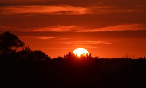 Hot Summer Sunset