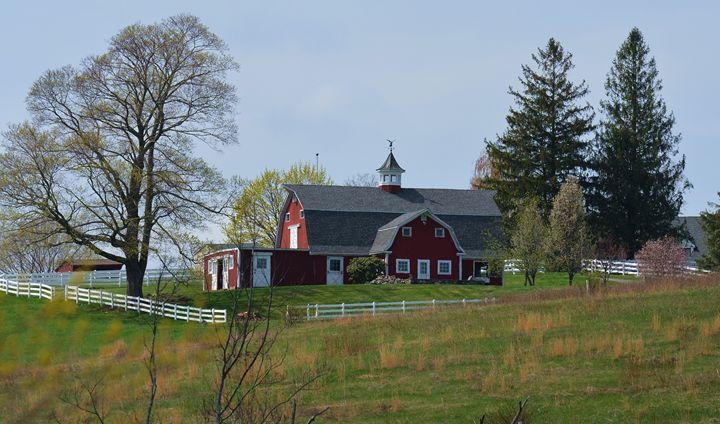 Hillside Barn in Springtime - NatureBabe Photos